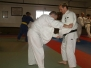 Adult Jujitsu and Judo