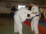 Adult Jujitsu and Judo