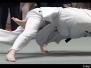 Judoka in Flight